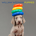 William Wegman Puppies Calendar