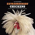 Extraordinary Chickens