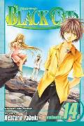 Black Cat #14