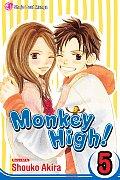 Monkey High 05