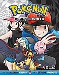 Pokemon Black & White 02