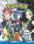 Pokemon Black & White 03