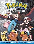 Pokemon Black & White 04