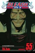 Bleach #55: Bleach, Volume 55 Cover