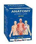 Anatomy Flash Cards (Academic)