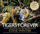 Tigers Forever Saving the Worlds Most Endangered Big Cat
