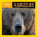 Face to Face with Grizzlies (Face to Face with Animals)