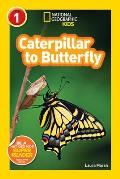 Caterpillar to Butterfly (National Geographic Kids: SR - Level 1) Cover