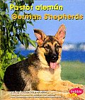 Pastor Alemn/German Shepherds (Perritos/Dogs)