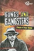 Gangs and Gangsters: Stories of Public Enemies (Bad Guys)
