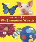 My First Book of Vietnamese Words (Bilingual Picture Dictionaries)