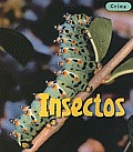 Cr-As #1: Insectos (Insects)