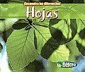 Spa-Hojas (Encuentra Las Diferencias!)