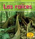 Las Raices = Roots (Plantas)