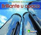 Brillante U Opaco (Shiny or Dull) (Propiedades de los Materiales)