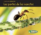 Las Partes de Los Insectos (Bug Parts) (Comparar Insectos)