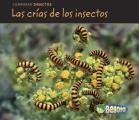 Las Cr-As de Los Insectos (Bug Babies) (Comparar Insectos)