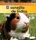 El Conejillo de Indias (Guinea Pig) (Ciclo de Vida)