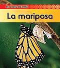 La Mariposa (Butterfly) (Ciclo de Vida)
