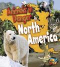 Animals in Danger in North America