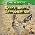 Roadrunners/Correcaminos (Animals That Live in the Desert/Animales del Desierto (Secon)