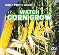 Watch Corn Grow (Watch Plants Grow!)