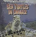 Sea Turtles in Danger
