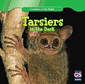 Tarsiers in the Dark