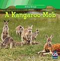 A Kangaroo Mob