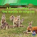 A Kangaroo Mob/Una Manada de Canguros
