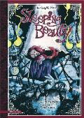 Sleeping Beauty The Graphic Novel