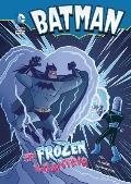 Batman My Frozen Valentine