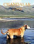 Chandalar 2005