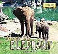 Meet the Elephant (At the Zoo)
