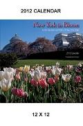 New York in Bloom, 2012 Calendar: Public Gardens and Parks of New York State (Excelsior Editions)