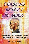 Shadows Bright as Glass: The Remarkable Story of One Man's Journey from Brain Trauma to Artistic Triumph Cover