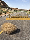 Tumbleweed: A Traveling Nurses Stories of Faith