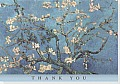 Almond Blossom Thank You Notes
