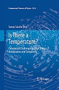 Is There a Temperature?: Conceptual Challenges at High Energy, Acceleration and Complexity
