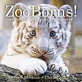 Zooborns!: Zoo Babies from Around the World (Classic Board Books)