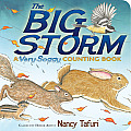 The Big Storm: A Very Soggy Counting Book (Classic Board Books)