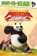 Po's Secret Move (Kung Fu Panda TV)