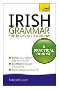 Irish Grammar You Really Need to Know (Teach Yourself Language)