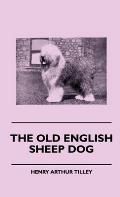 The Old English Sheep Dog
