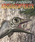 Archaeopteryx: The First Bird