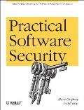 Practical Software Security