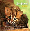 ZooBorns Cats!: The Newest, Cutest Kittens and Cubs from the World's Zoos Cover