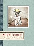 Wilma's World: Good Advice from a Good Dog