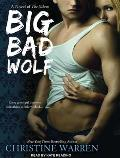 Big Bad Wolf (Others)