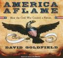 America Aflame: How the Civil War Created a Nation